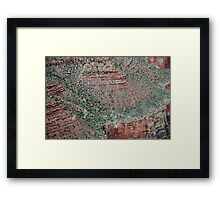 Details of the Grand Canyon II  Framed Print
