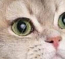 Heavy Breathing Cat Sticker