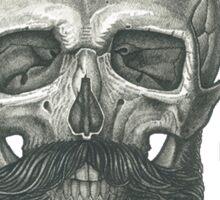 Bearded Skull Sticker