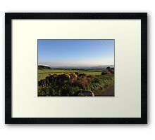 Aberdeenshire countryside... and look a dog! Framed Print
