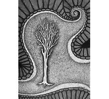 Surreal Tree Photographic Print