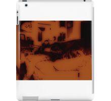 Bleacher iPad Case/Skin