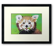 Seeing Red (Panda) Framed Print
