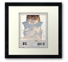 D.C. 2015 Framed Print
