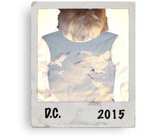 D.C. 2015 Canvas Print