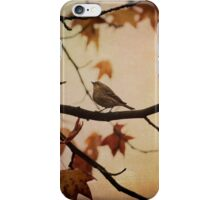 Little Warbler iPhone Case/Skin