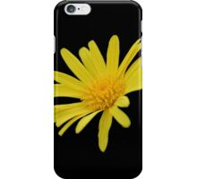 Yellow Daisy Flower Isolated iPhone Case/Skin