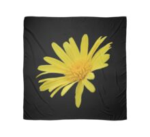 Yellow Daisy Flower Isolated Scarf