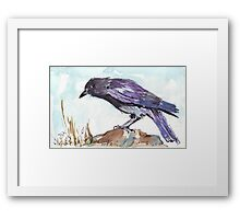 The playful Crow - Coco Framed Print