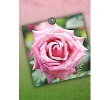Hybrid Tea Rose Pink Vintage Texture Ornamental Pattern Photographic Print
