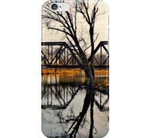 Winter Trestle iPhone Case/Skin