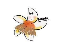 Walelia. Cute plumeria dancing hula Photographic Print