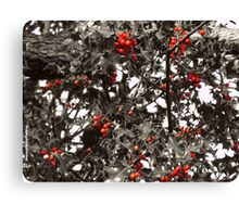Holly Canvas Print