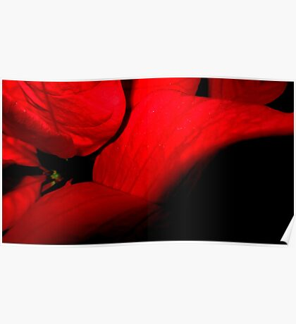 Romantic red leaves Poster