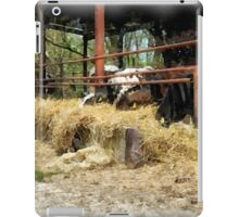 Cows with hay iPad Case/Skin