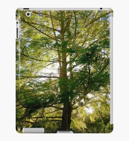 Nature's Light iPad Case/Skin