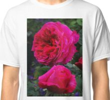 English David Austin Rose Othello Classic T-Shirt