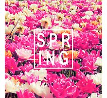 """Pretty """"Spring"""" Typography & Pink & Yellow Flowers Photographic Print"""