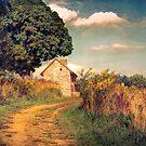 Webb Farm House by John Rivera