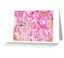 Black Cap Chickadee In Pink Weeping Willow Greeting Card