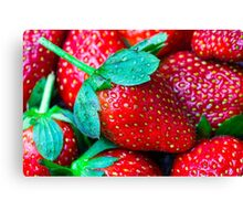 Red Strawberries Canvas Print