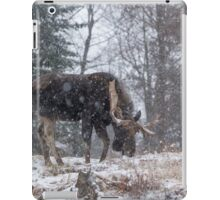 Moose in a snow storm iPad Case/Skin