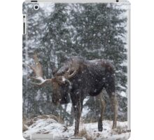 Moose in a snow snow storm iPad Case/Skin