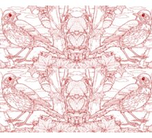 Song Thrush Toile de Jouy Inspired Red Sticker