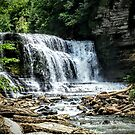 Cummins State Park Falls by Rayven Collins