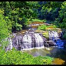 Middle Falls at Burgess Falls State Park by Rayven Collins