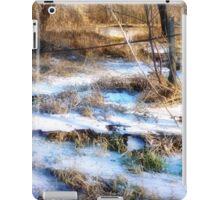 Flood Ice iPad Case/Skin