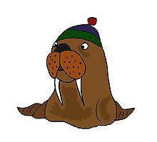 Cool Funny Walrus in Knitted Cap Photographic Print