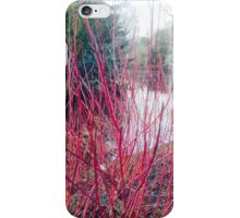Cannon Hill (Birmingham) 'A Beautiful view' by Simon Williams-Im iPhone Case/Skin