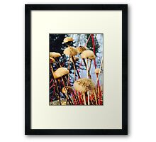 Beautiful Stroll by Simon Williams-Im Framed Print
