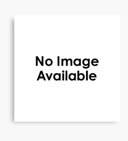 No Image available Canvas Print