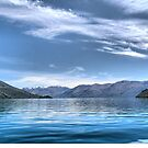 Wanaka Blue ( 8 ) - Our Fragile Planet. by Larry Lingard-Davis