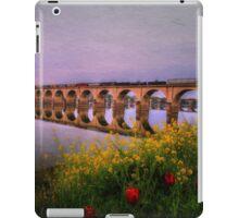 Springtime Reflections From Shipoke iPad Case/Skin
