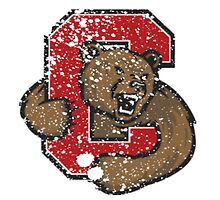 Distressed Cornell University Logo by katedylan