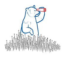 Da Bears - Searching Photographic Print