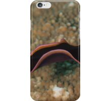 Swimming Flatworm iPhone Case/Skin