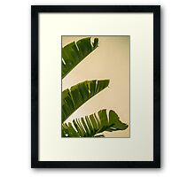 Banana Flag Framed Print