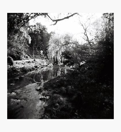 Merri Creek Photographic Print