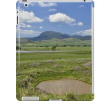 Peaceful Valley iPad Case/Skin
