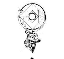 Buck + Geometry by Supreto