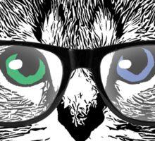 Nerdy Cat Hipster Kitten in Glasses Sticker