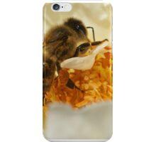 Pollen Time  iPhone Case/Skin