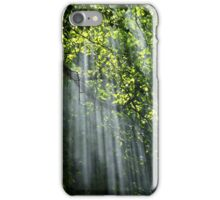 Canopy Rays  iPhone Case/Skin