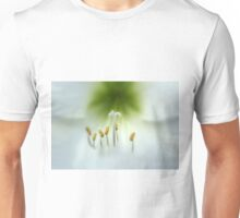 Soft Beauty Unisex T-Shirt