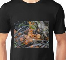 Fagus leaves in a small pool, Hanson's Track, Cradle Mountain,Tasmania. Unisex T-Shirt