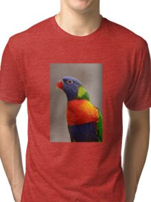 Colourful  Tri-blend T-Shirt